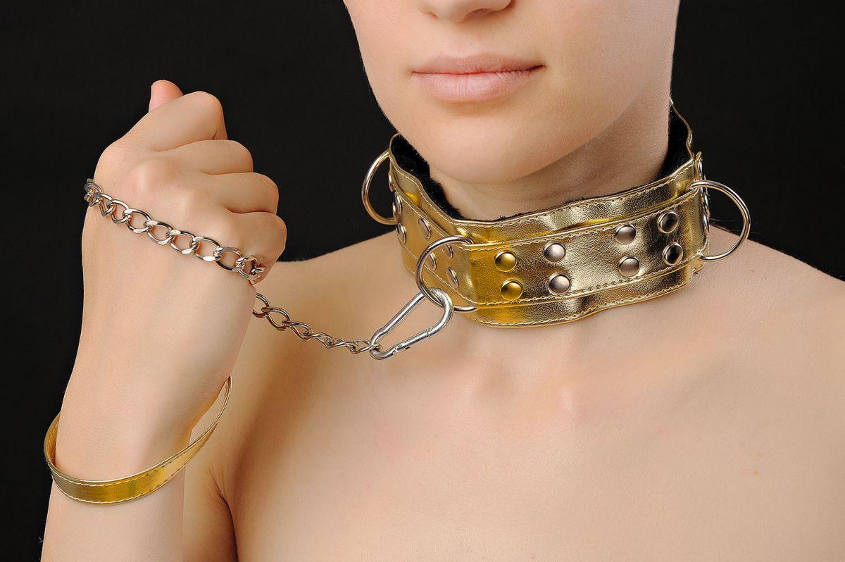 Золотистый ошейник с заклепками и цепочкой  - фото 140419