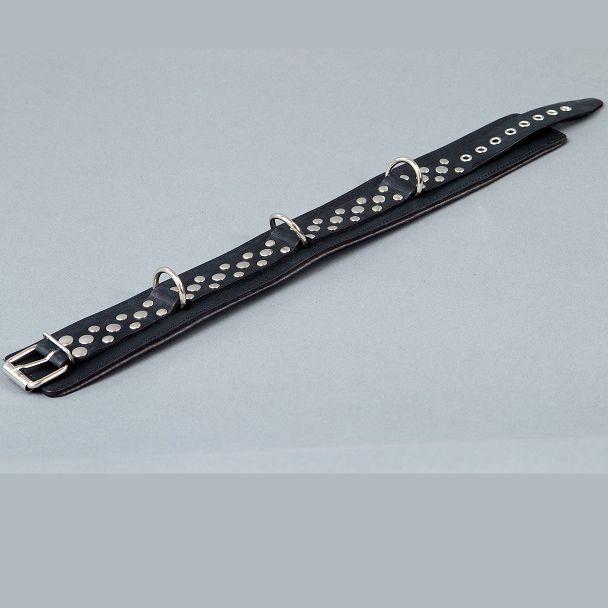 Черный ошейник на мягкой подкладке - фото 186043