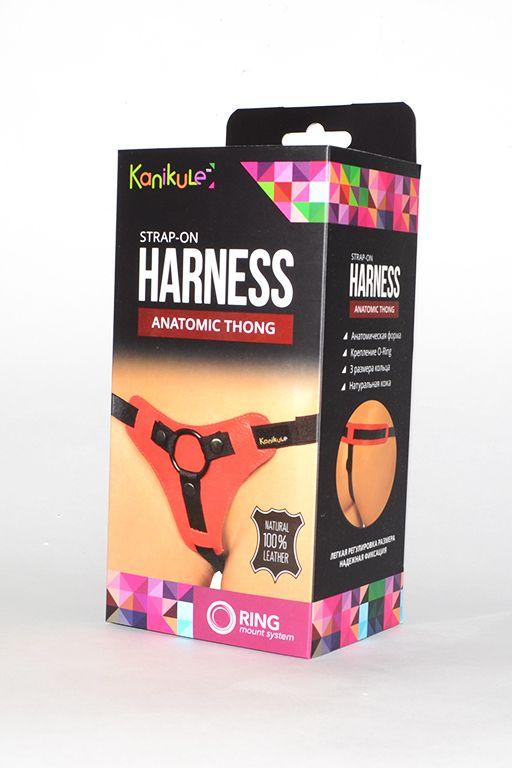 Красно-чёрные трусики для фиксации насадок кольцом Kanikule Leather Strap-on Harness  Anatomic Thong - фото 137737