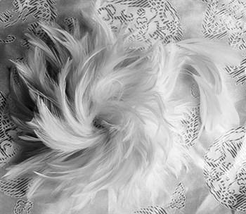 Заколка-брошь из натуральных петушиных перьев Kameli 1900