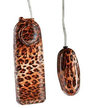 Виброяйцо леопардовое