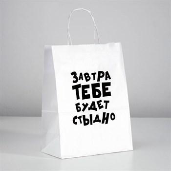 Подарочный пакет  Завтра тебе будет стыдно  - 30 х 24 см.
