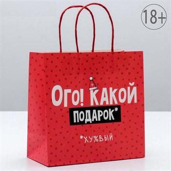 Подарочный пакет  Ого! Какой подарок  - 22 х 22 см.