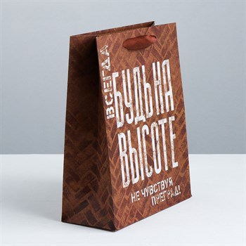 Подарочный пакет  Не чувствуй преград  - 40 х 31 см.