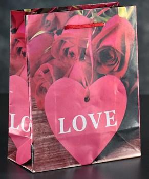 Подарочный пакет Love с розочками и сердечками - 23 х 18 см.