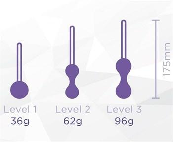 Набор из 3 фиолетовых вагинальных шариков Kegel Training Set