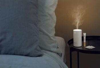 Ароматический диффузор и наполнитель с возбуждающим ароматом - 50 мл.