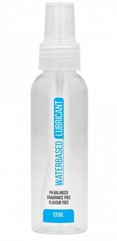 Лубрикант на водной основе Waterbased Lubricant - 100 мл.