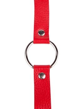 Кляп-кольцо на красных ремешках