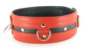 Черно-красный кожаный ошейник увеличенного размера