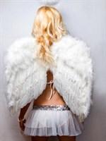 Белые перьевые крылья - фото 240055