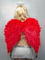 Перьевые красные крылья - фото 240056