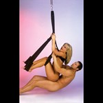 Чёрные секс-качели - фото 1144621