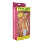 Вакуумная помпа Stallion Penis Developer Pump - фото 210335