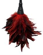 Кисточка с красно-чёрными пёрышками FRISKY FEATHER DUSTER - 36 см. - фото 137630